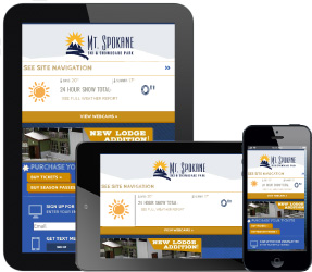 mobilewebsitedisplay
